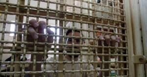 أسيران فلسطينيان دخلا عاما جديدا في سجون العدو الاسرائيلي