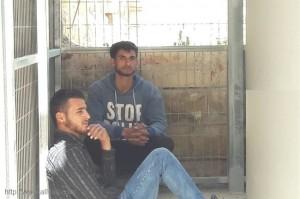 العدو الاسرائيلي يعتقل شابين فلسطينيين بالخليل